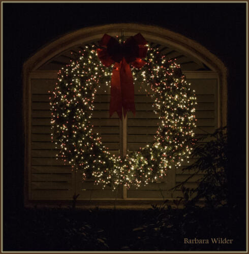 Christmas Window-Wilder