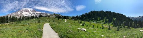 Dinga - Mt Rainier - sm-8697