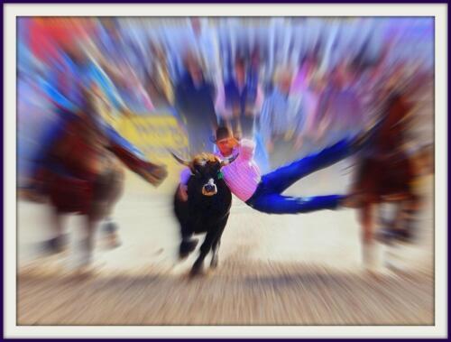 Tucson Rodeo bernie
