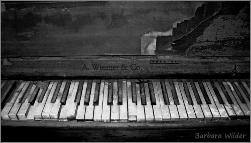 Wilder-Piano Keys