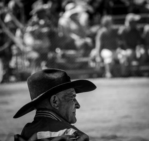 Wilder_8_Cowboy