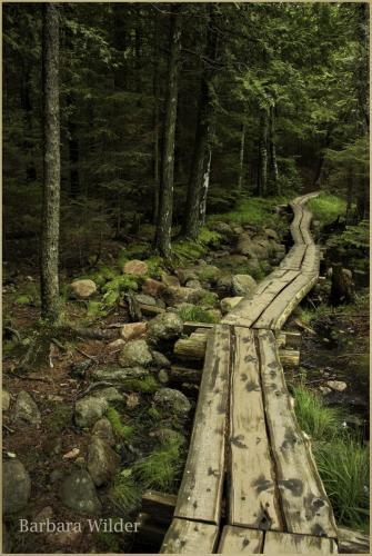 Wilder_Maine walkway