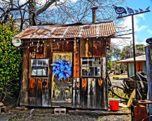 oracle cabin bernie