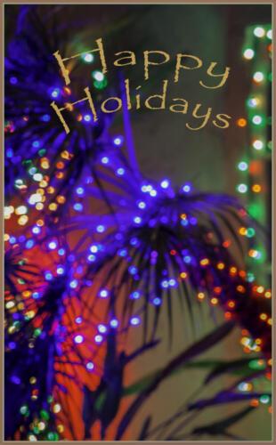 xHappy Holidays barb