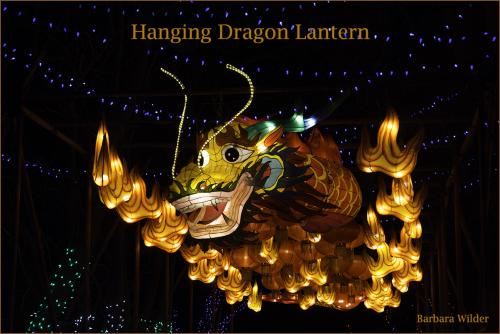 Asian Lantern Wilder Hanging Dragon
