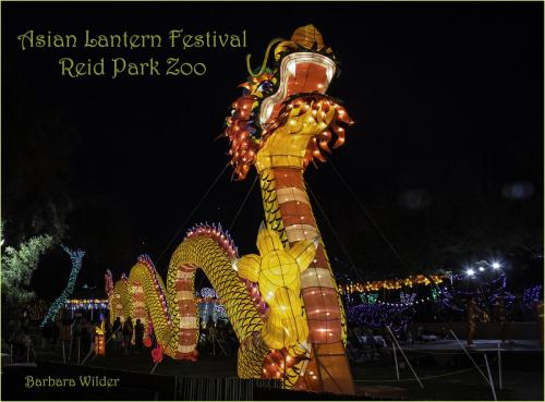 Asian Lanterns Wilder Dragon
