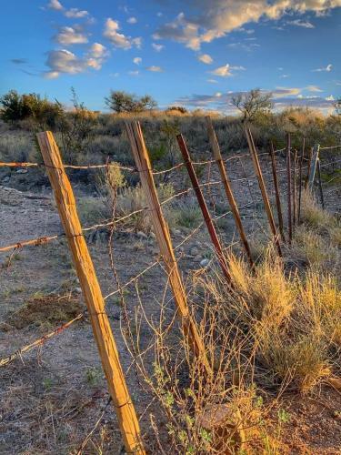 B. Grinonneau Fences 2 (1)