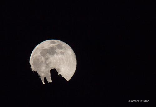BWilder 1 Moon