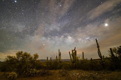 Burgess Skies 2 MilkyWay