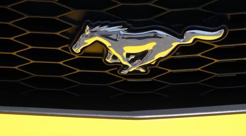 DAmbrosio 1 Mustang