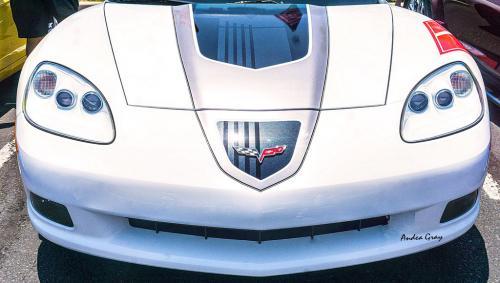 Gray 2 Car Show