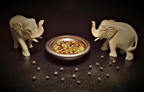 Ivory Indian Elephants and Spicesbeverly
