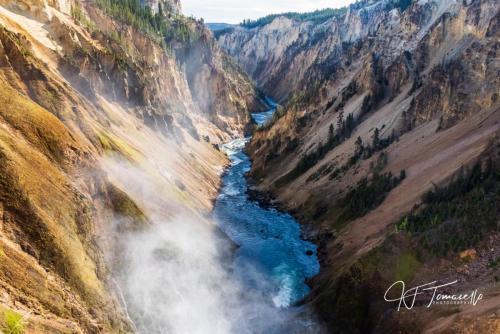J. Tomasello Yellowstone