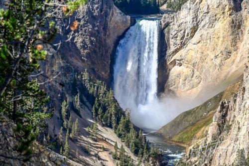 J. Tomasello Yellowstone5