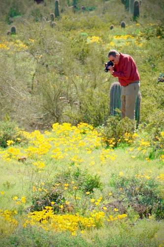 Picacho Henley Photographer