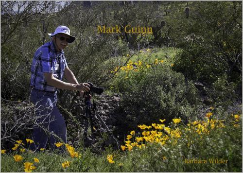 Picacho Wilder  Mark Guinn