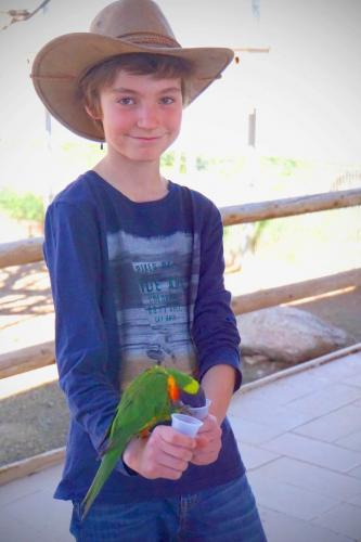 Rooster Cogburn Henley  Feeding the Parakeets