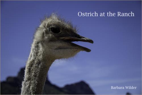 Rooster Cogburn Wilder  Ostrich