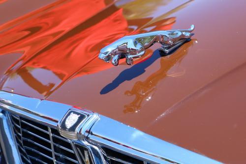 E. Victor 3 Car